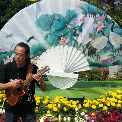 Affiche ukulele
