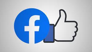 Face book 1